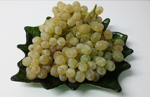 Aledo Grapes